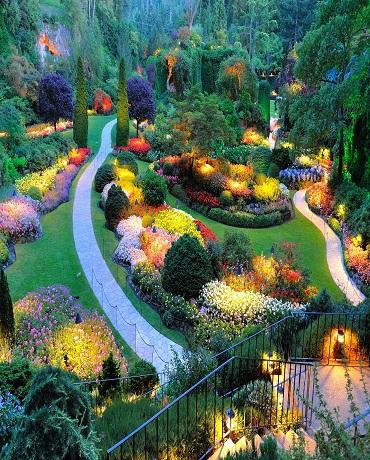 Valentine-Garden